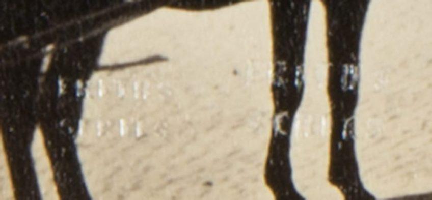 01-2 (съемка в прямом свете фрагмент)